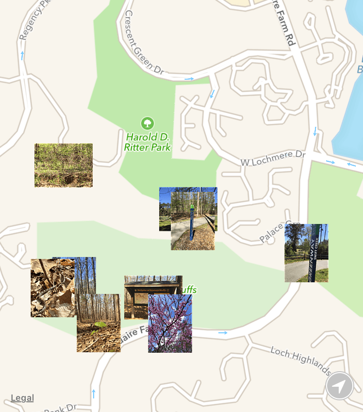 Cary Parks App Screen.png
